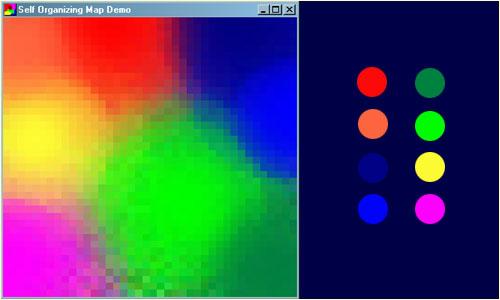 som_example.jpg